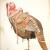 "justin gibbens: ""Bib fortuna"", watercolor, gouache, ink, tea on paper, 2009, 40"" x 26"""